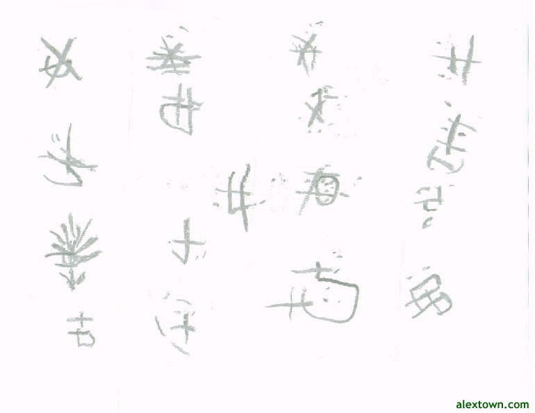 Chinese Symbols fire water power speed