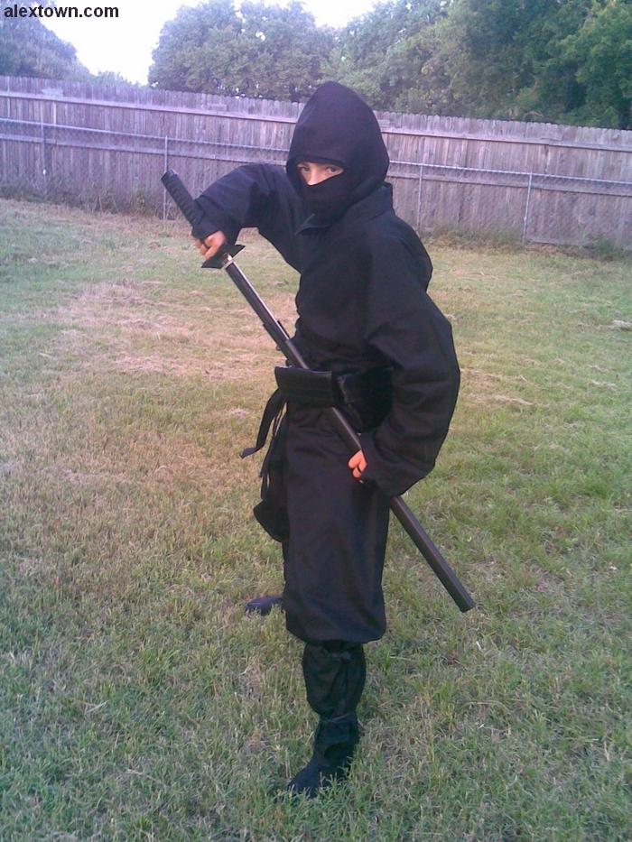 Ninja Sword Picture 1